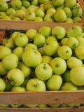 Apple-doosmarkt Royalty-vrije Stock Foto