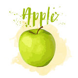 Apple drawn in watercolor. Vector Eps 10. Apple drawn in watercolor. Vector illustration Eps 10 Royalty Free Stock Photo