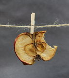 Apple dried bitten with a clothespeg Stock Photography