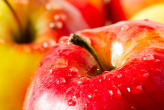 Apple with drop dew Royalty Free Stock Photography