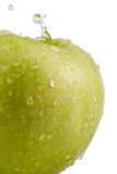 Apple with drops Stock Photography
