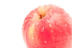 Apple with drops of water Stock Image