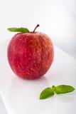 Apple e menta Fotografia Stock
