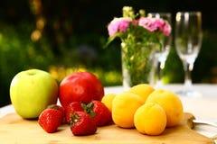 Apple e a nectarina frutificam no fundo do verão Fotografia de Stock Royalty Free
