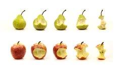 Apple e pera che sono mangiati Immagine Stock