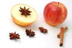 Apple e spezia di inverno Fotografia Stock Libera da Diritti