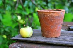 Apple e vaso Fotografie Stock