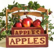 Apple-Efeukorb Lizenzfreies Stockfoto