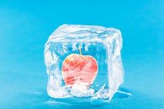 Apple eingefroren innerhalb des Eis-Würfels Stockfotografie