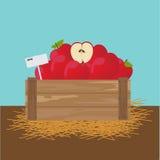 Apple em uma caixa de madeira Imagens de Stock Royalty Free