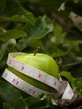 Apple en árbol con cinta métrica Imagenes de archivo
