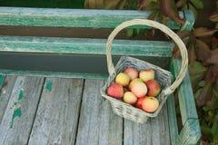 Apple en cesta Fotografía de archivo libre de regalías