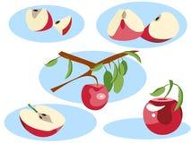 Apple en diversas porciones Entero, crece en un árbol, una mitad y una rebanada En estilo minimalista Vector isométrico plano libre illustration