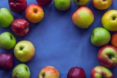 Apple en fondo azul Imagen de archivo libre de regalías