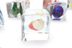 Apple en glaçon d'isolement sur le blanc avec la profondeur des effets de champ Glaçons avec les baies fraîches Baies congelées d Photo stock