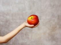 Apple en la mano Foto de archivo libre de regalías