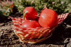 Apple en la pequeña cesta imagenes de archivo