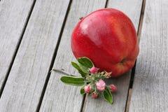 Apple en la tabla de madera Imágenes de archivo libres de regalías