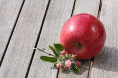 Apple en la tabla de madera Fotos de archivo libres de regalías
