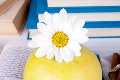 Apple en los libros Fotos de archivo libres de regalías