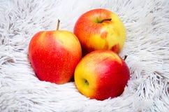 Apple en un fondo gris Imagen de archivo libre de regalías