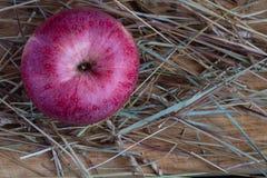 Apple en una tabla de madera en el heno fotografía de archivo