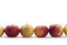 Apple enfileira Fotografia de Stock Royalty Free