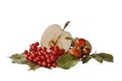 Apple, escaramujos, bayas del viburnum - productos naturales - dieta sana Imagen de archivo libre de regalías