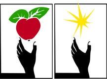 Apple, estrella, mano ilustración del vector