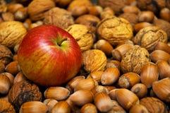 Apple et noix Photo libre de droits