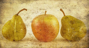 Apple et poires dans la grunge Photographie stock