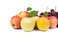 Apple et raisin sur le fond blanc d'isolement Photo libre de droits