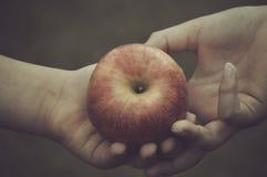 Apple exchange. Red apple exchange between two hands stock image