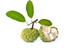 Apple för två socker frukt Royaltyfria Foton