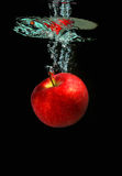 Apple falling into water. Red apple falling into water stock photos