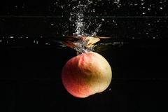 Apple falling in water Stock Photos