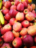 Apple at Farmer`s Market Royalty Free Stock Photography