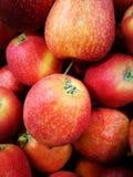 Apple at Farmer`s Market Royalty Free Stock Image