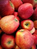 Apple at Farmer`s Market Stock Image