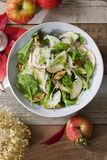 Apple and fennel salad with walnuts and greens. Fresh apple and fennel salad with walnuts, onion and greens royalty free stock photography