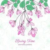 Apple fiorisce l'illustrazione disegnata a mano variopinta del fiore isolata su fondo verde, modello floreale di vettore senza cu royalty illustrazione gratis