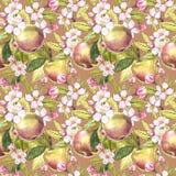 Apple fiorisce l'illustrazione senza cuciture disegnata a mano dell'acquerello del modello Immagine Stock Libera da Diritti