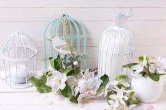 Apple fleurissent et des bougies dans des cages à oiseaux décoratives Photographie stock