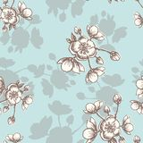 Apple flower blossom hand drawn, seamless floral pattern, outline art for greeting card, package design cosmetic, wedding i. Vector Apple flower blossom hand stock illustration