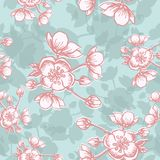 Apple flower blossom hand drawn, seamless floral pattern, outline art for greeting card, package design cosmetic, wedding i. Vector Apple flower blossom hand vector illustration