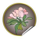 Apple flower sticker grey Royalty Free Stock Image