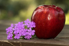 Apple and Flowers Royalty Free Stock Images