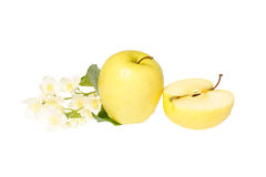 Apple with flowers Royalty Free Stock Image