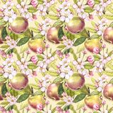 Apple flowers hand drawn seamless pattern watercolor illustration. Apple flowers hand drawn seamless pattern watercolor illustration stock illustration