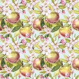 Apple flowers hand drawn seamless pattern watercolor illustration. Apple flowers hand drawn seamless pattern watercolor illustration royalty free illustration
